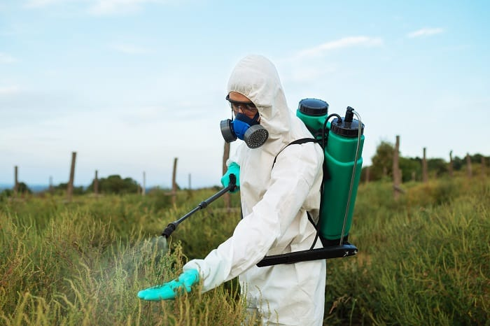 The Best Permanent Killers of Weeds and Grass